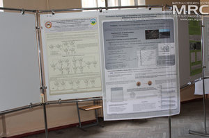 Poster Session of the Humboldt-Conference