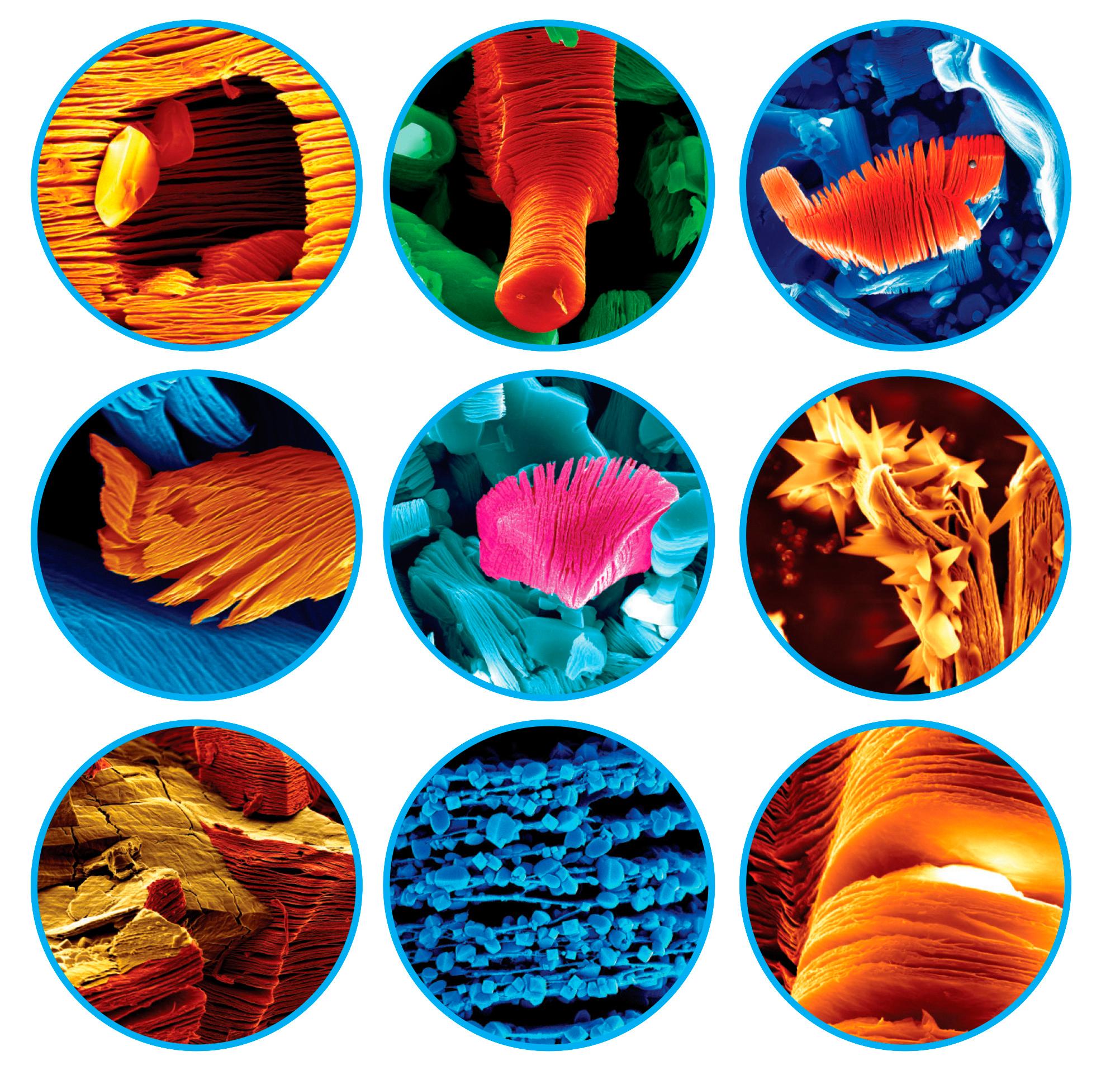максены, SEM микроскопия, максен фото