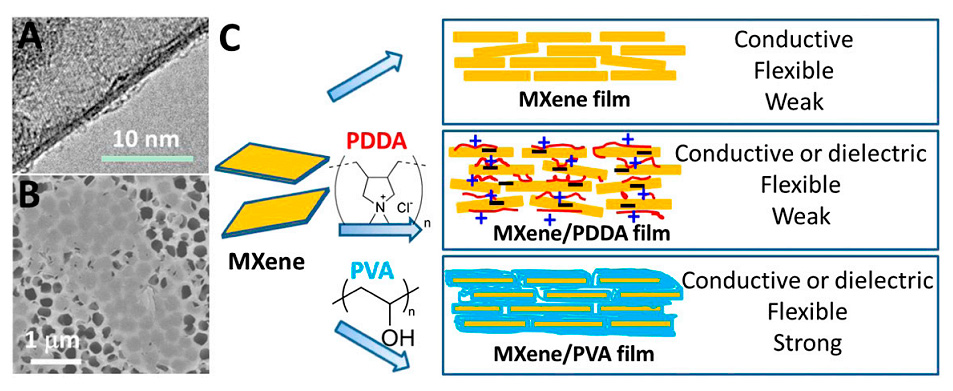 Fig. 1. (A) TEM and (B) SEM images of MXene flakes after delamination and before film manufacturing. (C) A schematic illustration of MXene-based functional films with adjustable properties.