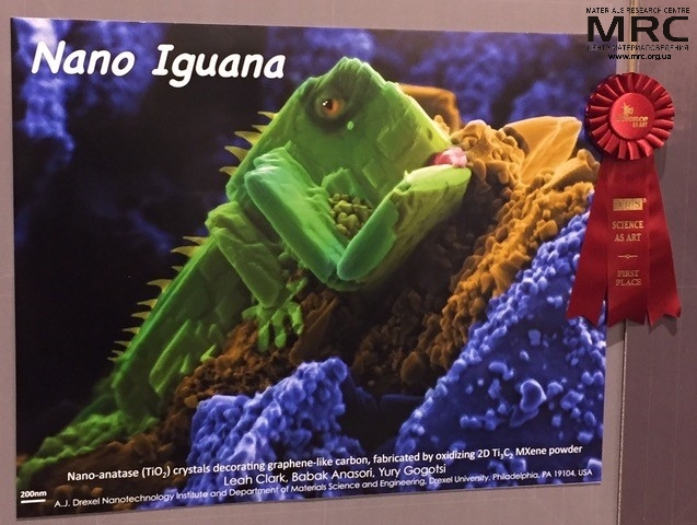 Entry Nano Iguana became a 1st place winner at Science as Art Competition 2017: Nano-anatase (TiO2) crystals decorating graphene-like carbon, fabricated by oxidizing 2d Ti3C2 MXene powder, presented by A. J. Drexel Nanotechnology Institute and Department of Materials Science  and Engineering, Drexel University, USA